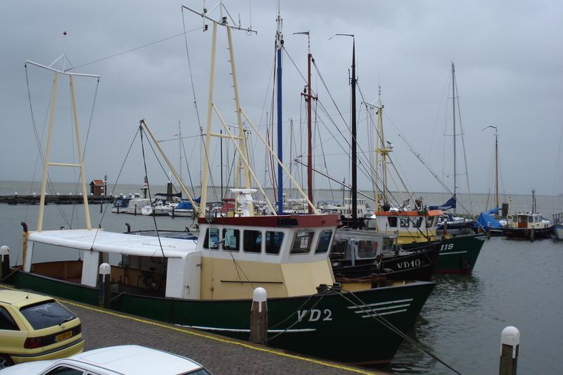 Friesland_juli_2007_001