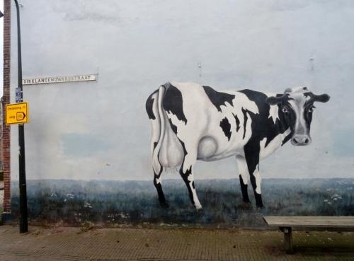 Delft, koe op muur